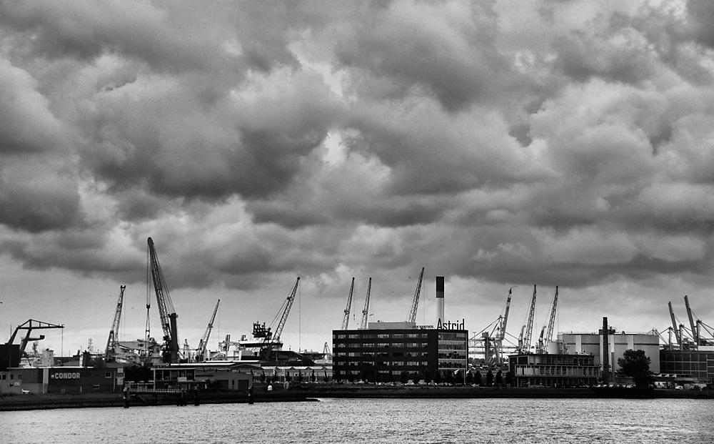 photoblog image ...Black Monday Rotterdam....