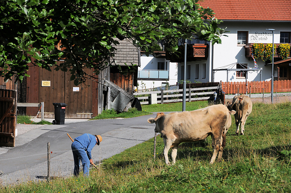 photoblog image ...Man at work, Ehrwald, Austria....