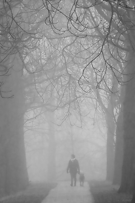 .....Lady with the dog in the fog....